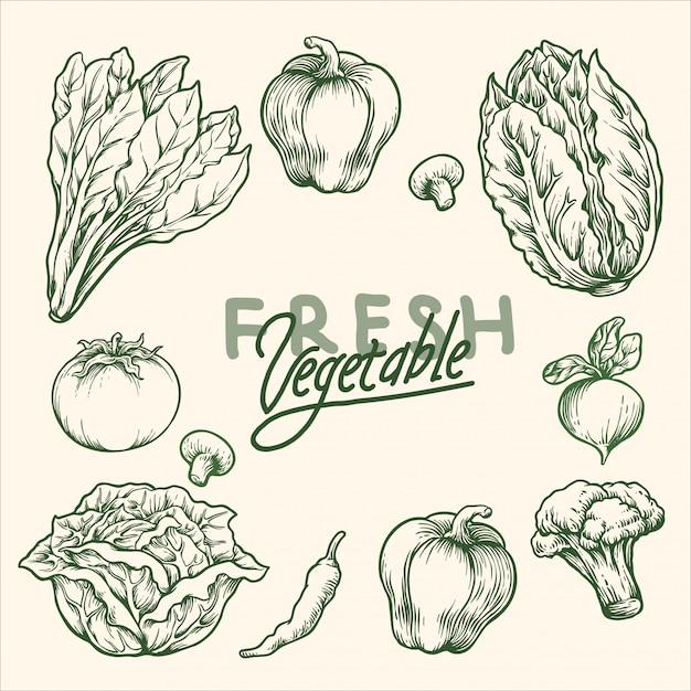 Vegetais frescos Vetor Premium
