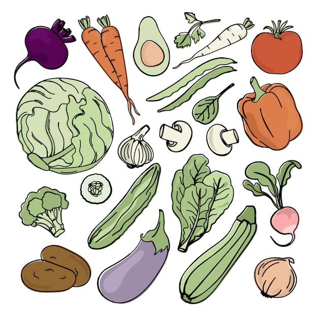 Vegetarian set nutrição paleo dieta natural Vetor Premium