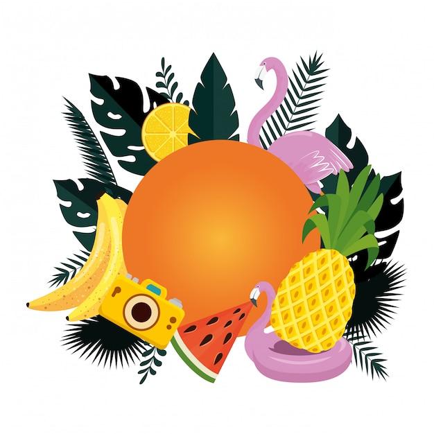Verão circular com folhas e conjunto de ícones Vetor Premium