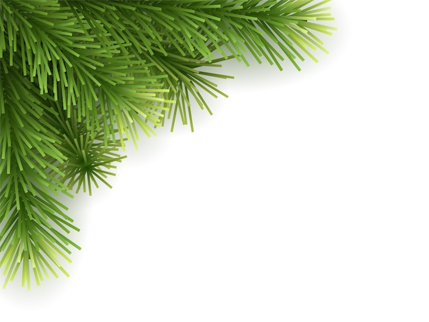 Verde de galho de árvore de natal artificial. Vetor Premium