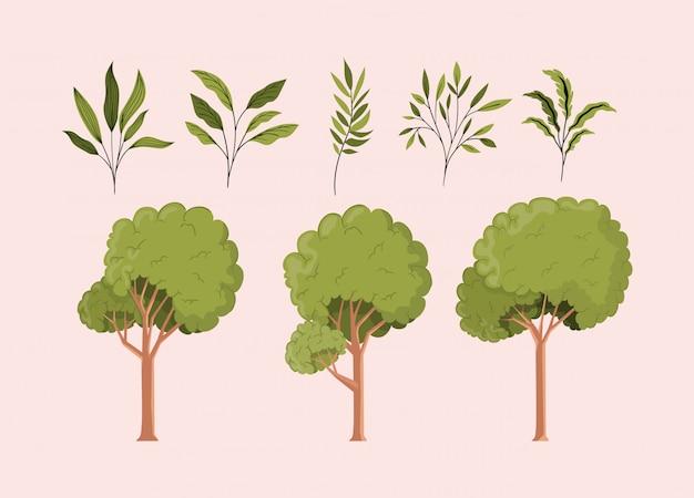 Verde, folheia, e, árvores, natural, jogo, ícones Vetor grátis