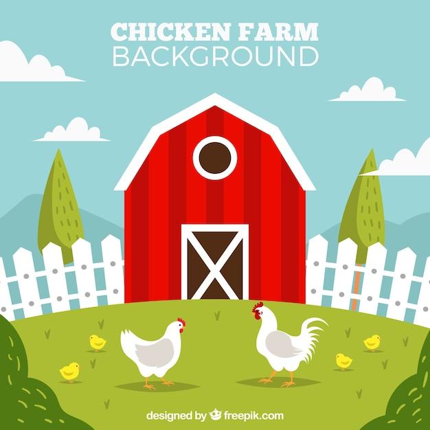 Vermelho, galinheiro, galinhas, fundo Vetor Premium