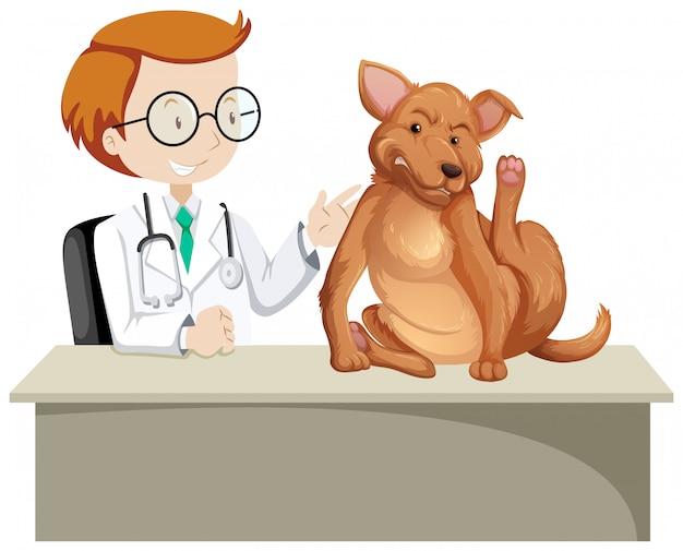 Veterinário com animal doente Vetor grátis