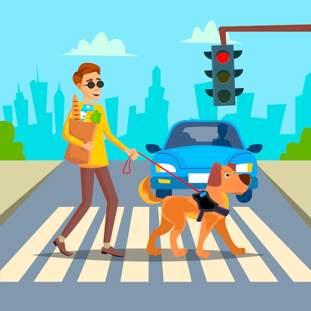 Vetor de cego. jovem com cão de estimação ajudando o companheiro. conceito de socialização de deficiência. pessoa cega e cão de guia na faixa de travessia. ilustração de personagem de desenho animado Vetor Premium