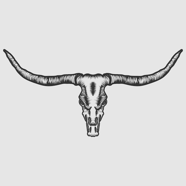 Vetor de crânio de longhorn Vetor Premium