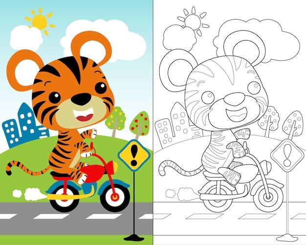 Vetor De Desenhos Animados Pequenos Do Tigre No Velomotor Livro
