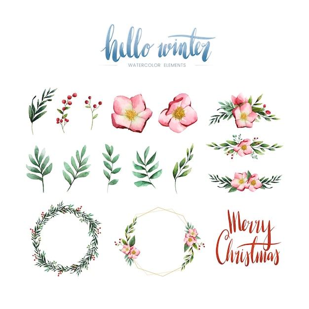 Vetor de flores e elementos de inverno em aquarela Vetor grátis