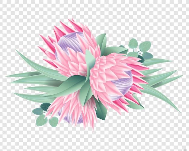 Vetor de flores protea Vetor Premium