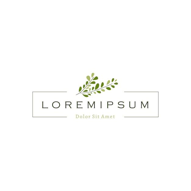 Vetor de logotipo de folha de ramo de árvore Vetor Premium