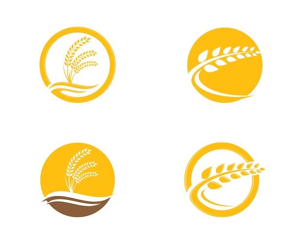 Vetor de modelo de logotipo de trigo Vetor Premium