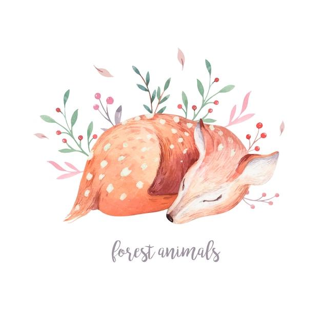 Vetor de personagem bebê veado. animal de floresta aquarela de jovem corça bonito mão desenhada. Vetor Premium