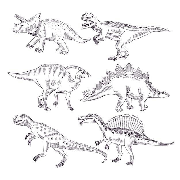 Vida selvagem com dinossauros. conjunto de ilustrações de mão desenhada de t rex e outros tipos de dino Vetor Premium