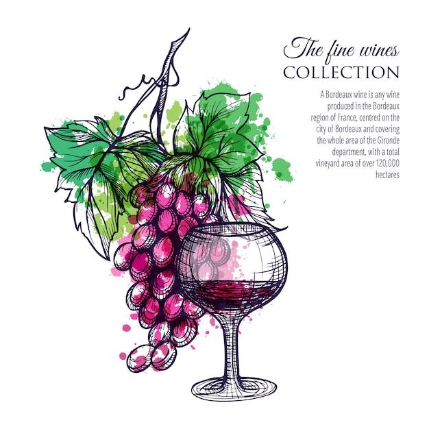 Vinho tinto com uva Vetor grátis