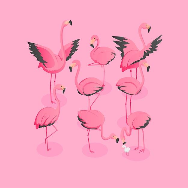 Vista isométrica do bando de flamingos Vetor Premium