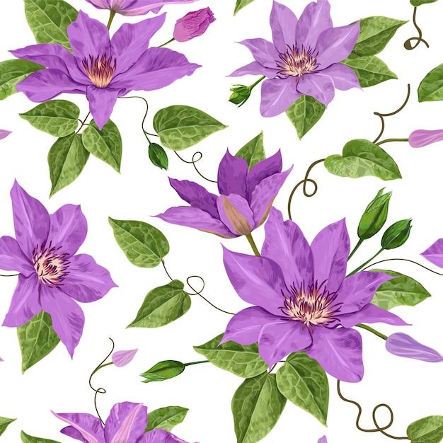 Watercolor clematis flowers floral padrão sem emenda tropical Vetor Premium
