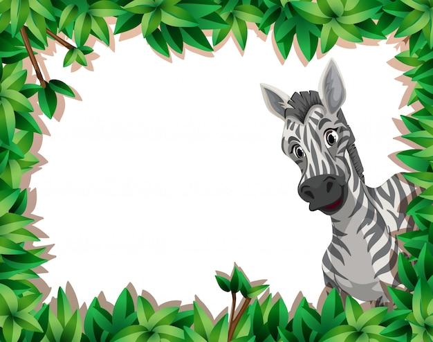 Zebra no quadro de natureza com copyspace Vetor grátis
