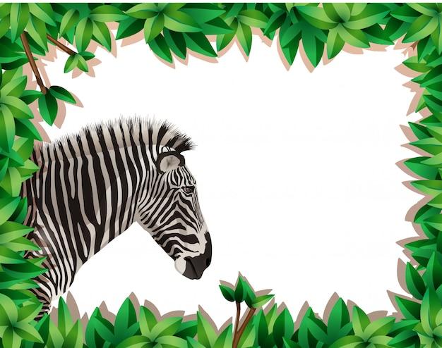 Zebra no quadro de natureza Vetor Premium