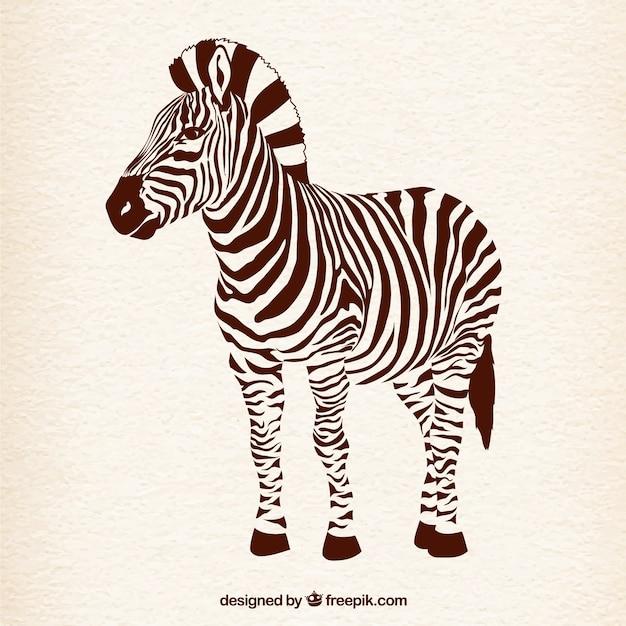 Zebra Vetor grátis