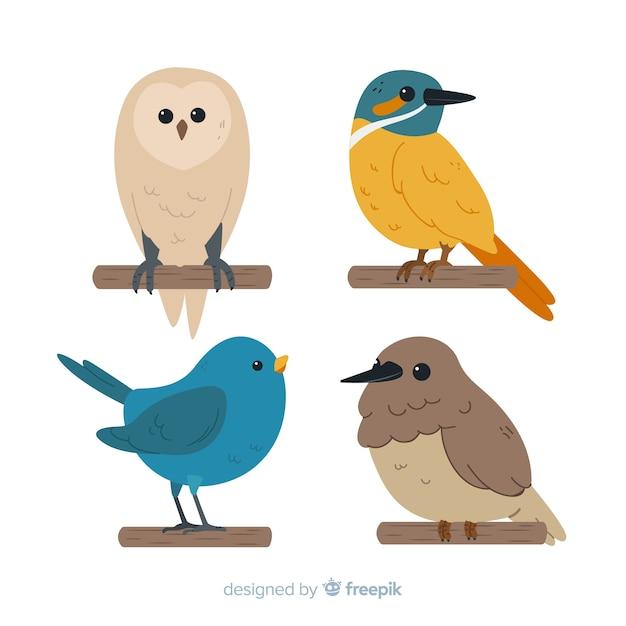 Accumulazione sveglia disegnata a mano dell'uccello Vettore gratuito
