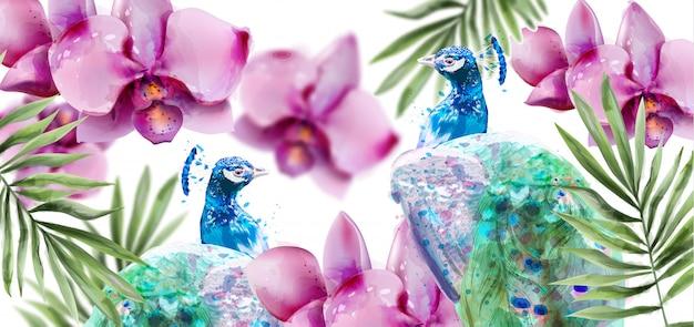 Acquerello di fiori di orchidea e pavone Vettore Premium