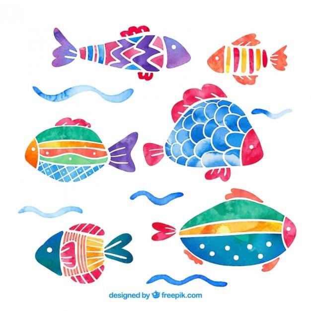 Acquerello pesci colorati pacchetto scaricare vettori gratis for Immagini di pesci disegnati