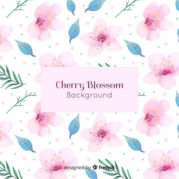 Acquerello sfondo di fiori di ciliegio Vettore gratuito