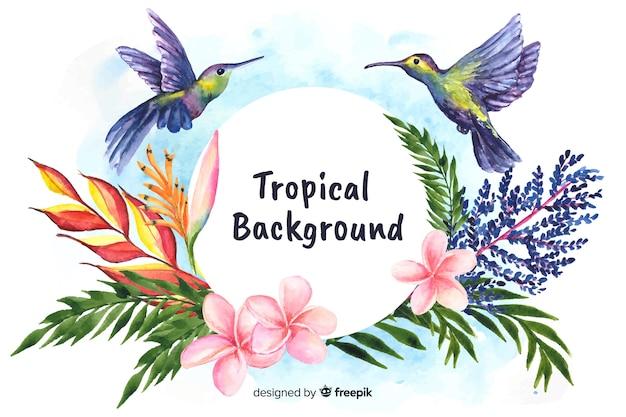Acquerello sfondo di piante e uccelli tropicali Vettore gratuito