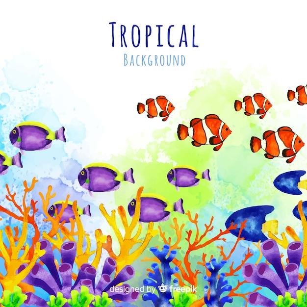 Acquerello sfondo tropicale Vettore gratuito