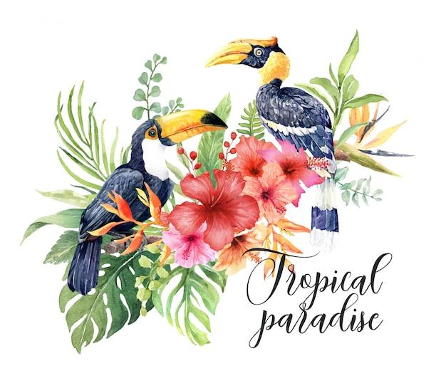 Acquerello uccelli tropicali great hornbill and toucan. Vettore Premium