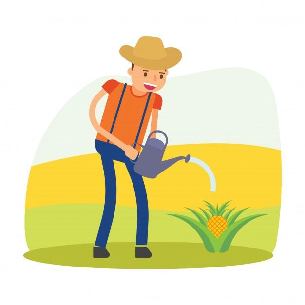 Agricoltore agricoltore agrario tiller raccolta ananas frutta carattere cartone animato Vettore Premium