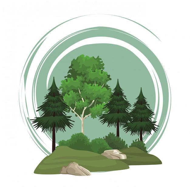 Alberi natura paesaggio Vettore Premium