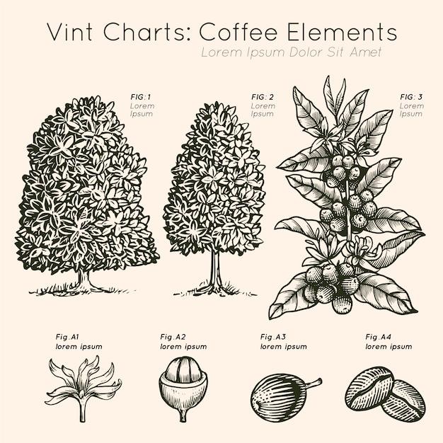 Albero dei elementi del caffè dei grafici di vint disegnato a mano Vettore gratuito