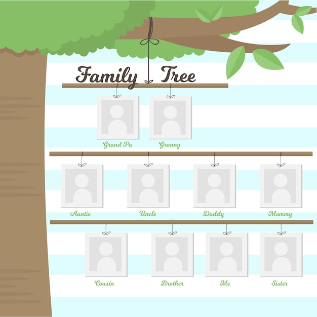 Albero genealogico appeso su un ramo Vettore gratuito