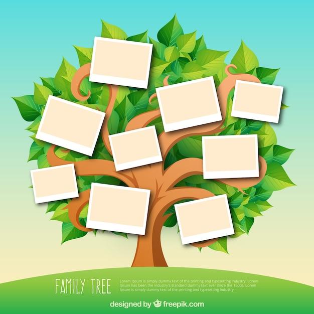 Albero genealogico con foglie in toni verdi Vettore gratuito
