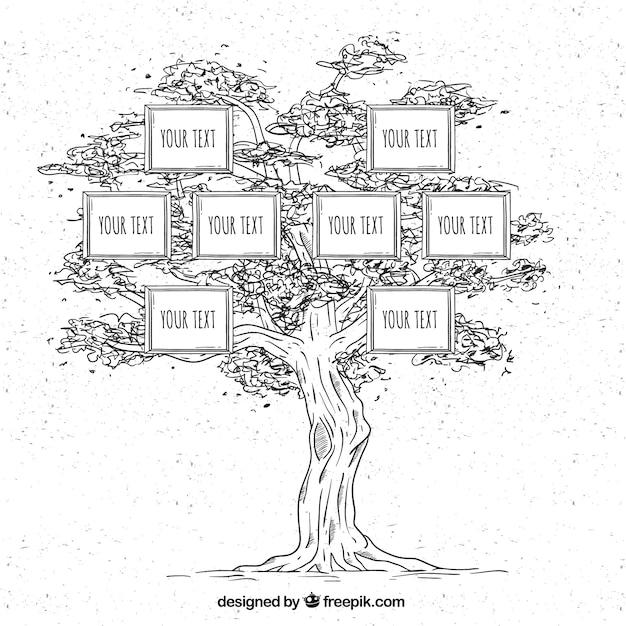 Albero genealogico disegnato a mano in stile vintage Vettore gratuito