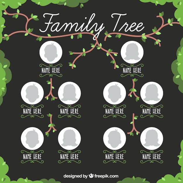 Albero genealogico graziosa con i rami e le foglie Vettore gratuito