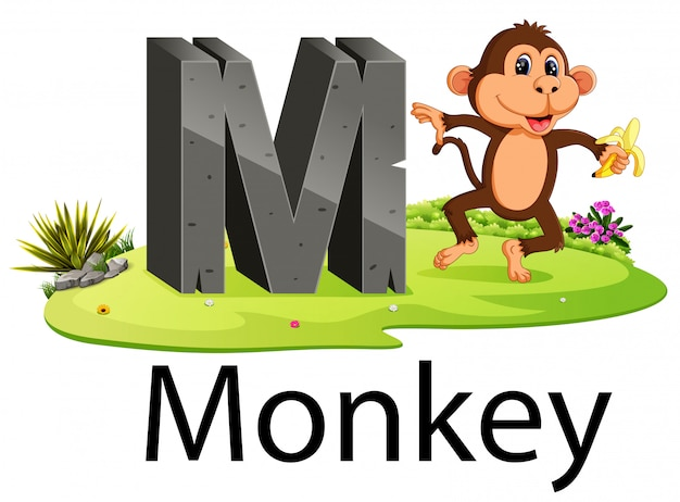 Alfabeto animale zoo m per scimmia con l'animale carino Vettore Premium
