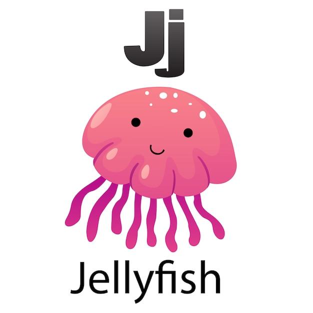 Alfabeto lettera j-medusa Vettore Premium