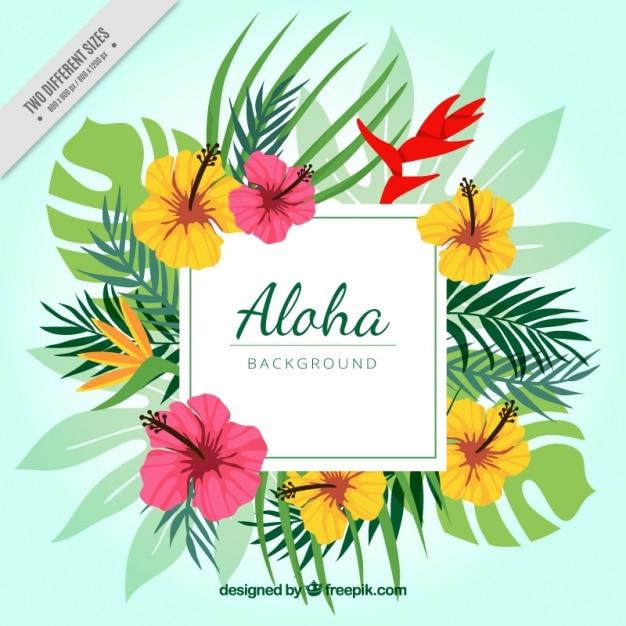 Aloha sfondo floreale Vettore gratuito