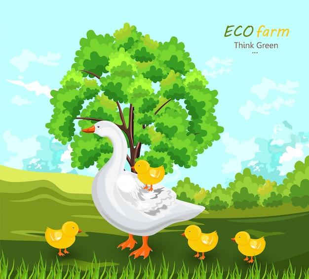 Anatra e germogli all'ecosistema Vettore Premium