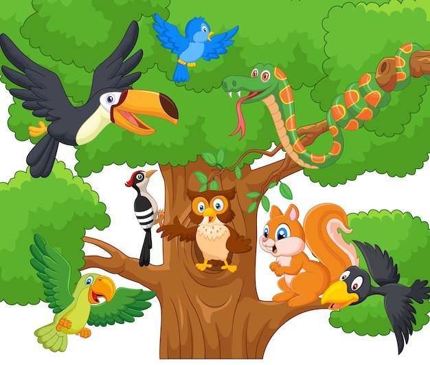 Animale da collezione dei cartoni animati sugli alberi scaricare