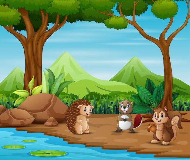 Animali cartoon che vivono nella foresta Vettore Premium