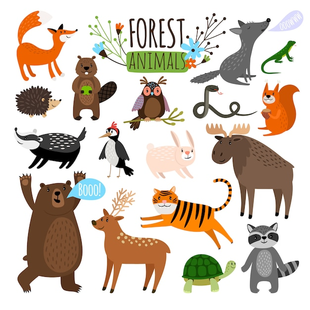 Animali della foresta. l'illustrazione stabilita di vettore del disegno animale dell'animale del terreno boscoso gradisce le alci o cervi e procione, volpe ed orso isolati Vettore Premium