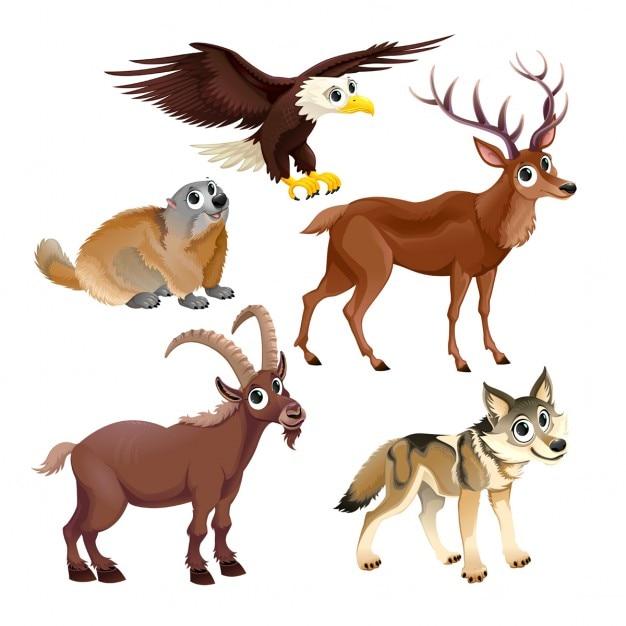 Animali di montagna divertenti cervi aquila groundhog - Animali dei cartoni animati a colori ...