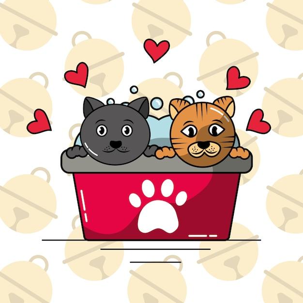 Amore In Vasca Da Bagno.Animali Domestici Gatto Nella Vasca Da Bagno Lavaggio Amore Pulito