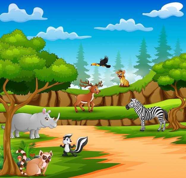 Animali felici del fumetto sulla scena della natura Vettore Premium