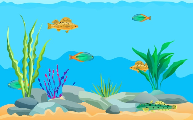 Animali marini multicolori, piante acquatiche e pietre Vettore Premium