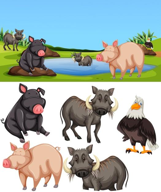 Animali nella scena dello stagno Vettore gratuito