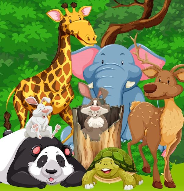 Animali selvaggi che vivono nella foresta Vettore gratuito