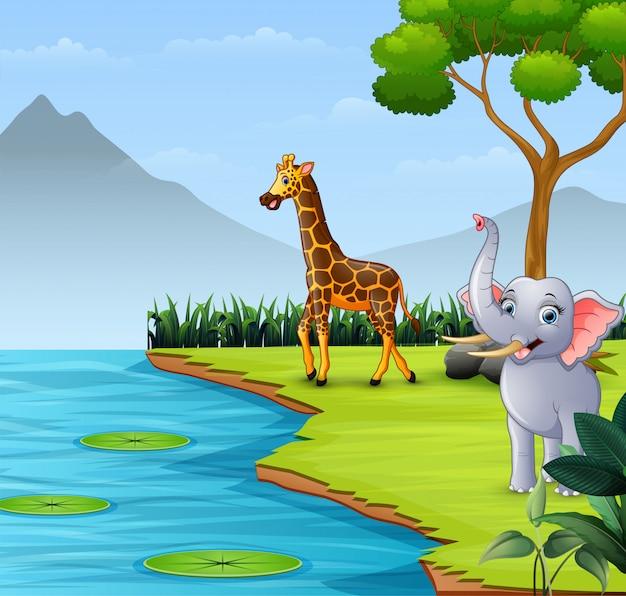 Animali selvaggi che vivono vicino al fiume Vettore Premium